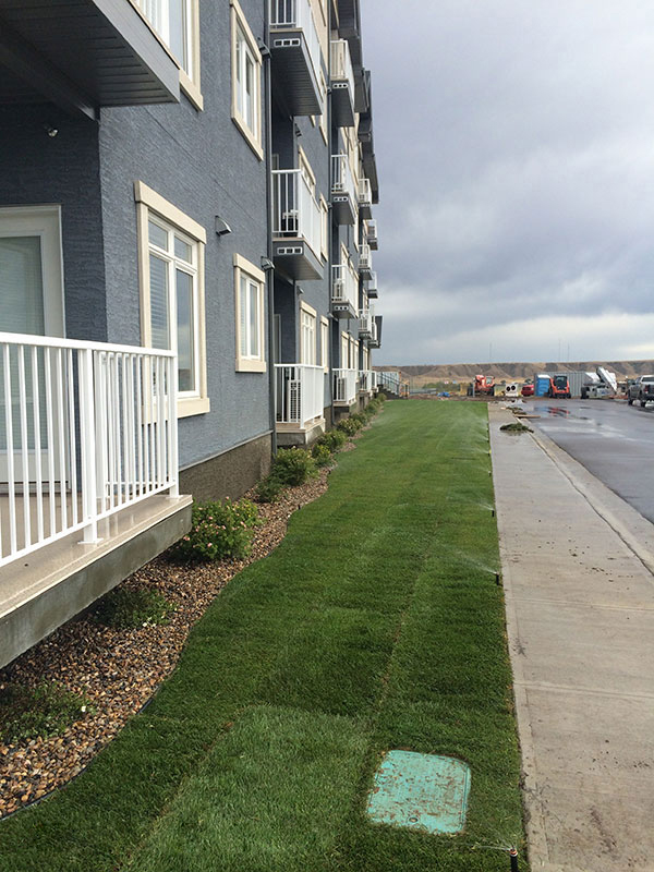 Crescent Heights Condos - irrigation of the lawn
