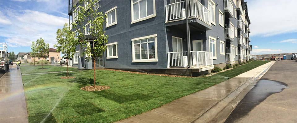 Irrigation on apartments building lawn
